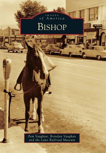 9780738581835: Bishop