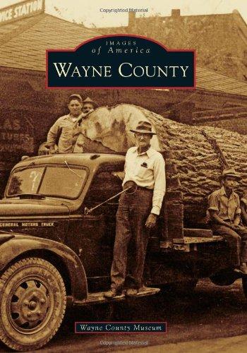 9780738586960: Wayne County (Images of America)