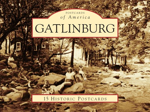 9780738587943: Gatlinburg (Postcards of America)