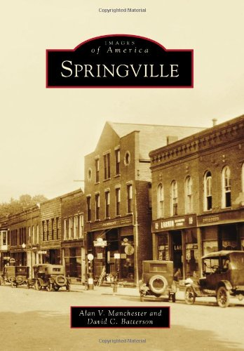 9780738591575: Springville (Images of America)