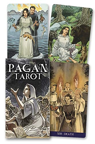 9780738702438: The Pagan Tarot Cards