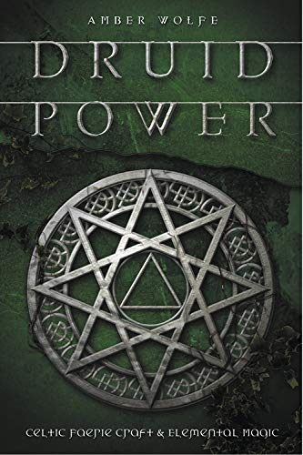 9780738705880: Druid Power: Celtic Faerie Craft and Elemental Magic