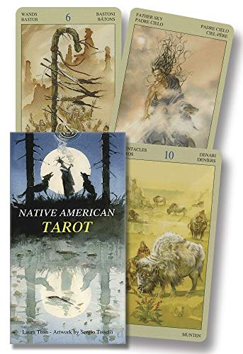9780738705989: Native American Tarot
