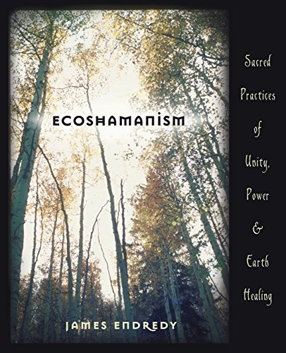 9780738707426: Ecoshamanism: Sacred Practices of Unity, Power and Earth Healing