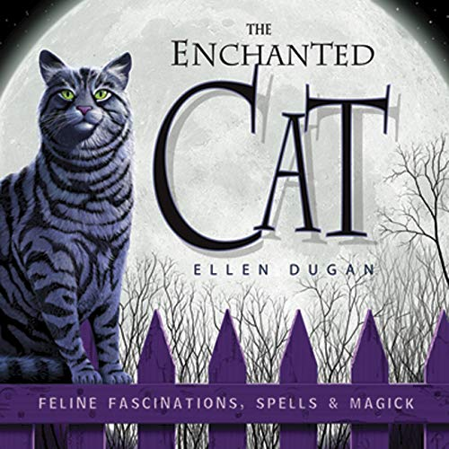 9780738707693: The Enchanted Cat: Feline Fascinations, Spells and Magick