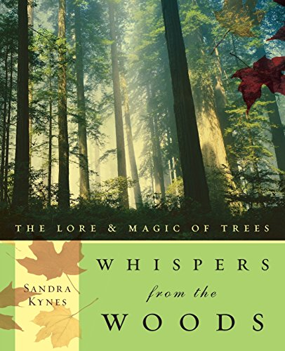 9780738707815: Whispers from the Woods: The Lore & Magic of Trees