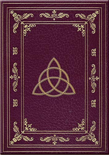 9780738718606: Wiccan Journal