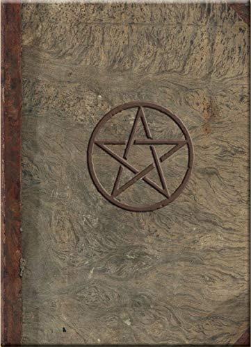 9780738718620: Magical Journal