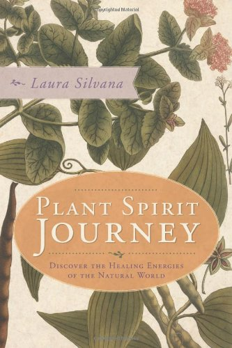 9780738718637: Plant Spirit Journey: Discover the Healing Energies of the Natural World