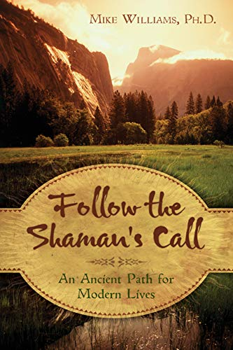 9780738719849: Follow the Shaman's Call: An Ancient Path for Modern Lives