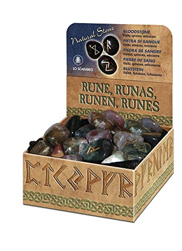 9780738720845: Bloodstone Runes