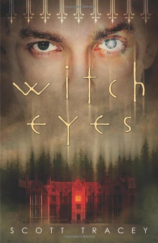9780738725956: Witch Eyes