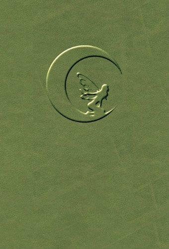 9780738730981: Fairy Moon Journal