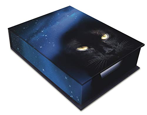 9780738731070: Cat Note Box