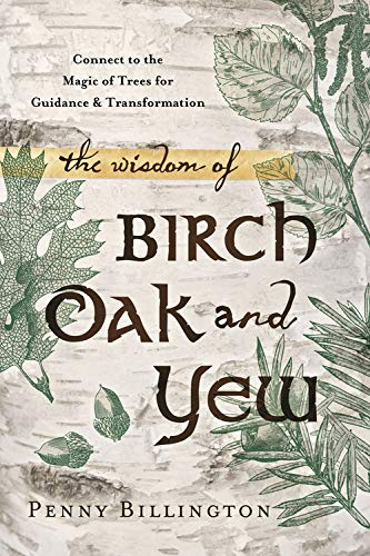 9780738740904: The Wisdom of Birch, Oak, and Yew: Connect to the Magic of Trees for Guidance & Transformation