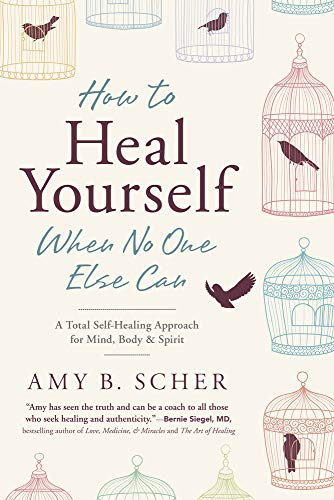 9780738745541: How to Heal Yourself When No One Else Can: A Total Self-Healing Approach for Mind, Body, and Spirit