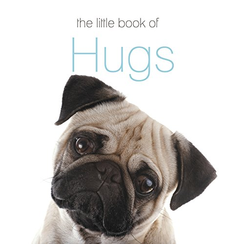 9780738748351: The Little Book of Hugs