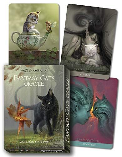 9780738763408: Barbieri Fantasy Cats Oracle