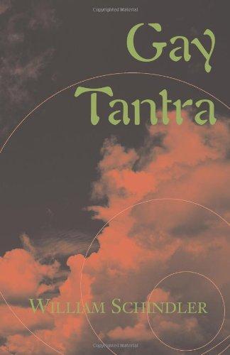 9780738849317: Gay Tantra