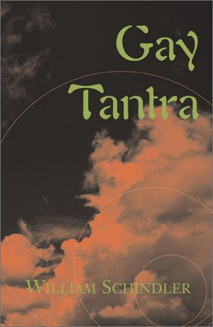 9780738864099: Gay Tantra