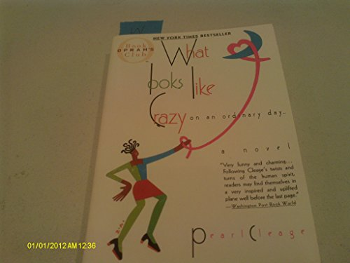 9780739431603: What looks like Crazy on an ordinary day ...a novel