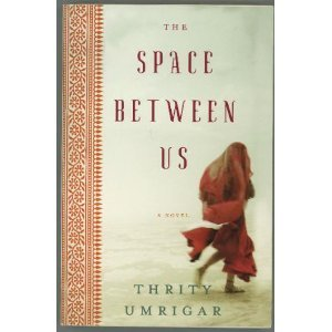 9780739469866: The Space Between Us