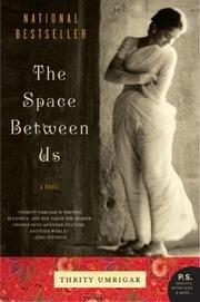 9780739469866: Space Between Us