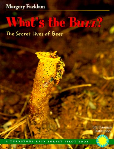9780739822289: What's the Buzz?: The Secret Lives of Bees (Rain Forest Pilot)