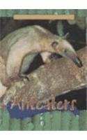 Anteaters (Animals of the Rain Forest): Dollar, Sam