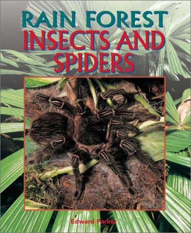 Insects and Spiders (Rain Forest (Rain Tree))