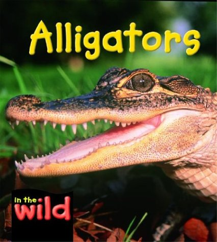 9780739854952: Alligators (In the Wild)
