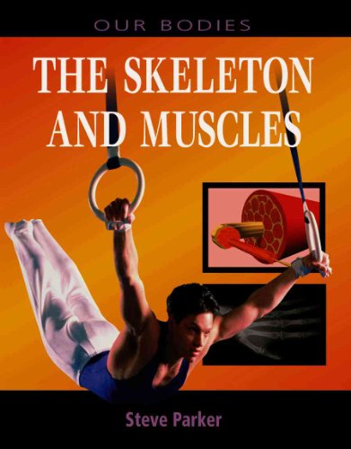 9780739866221: The Skeleton and Muscles (Our Bodies (Heinemann Hardcover))