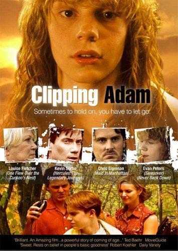 Clipping Adam: Bridgestone Multimedia Group
