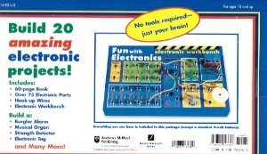 9780740703317: Fun with Electronics, Build 20 Amazing Electronic Projects