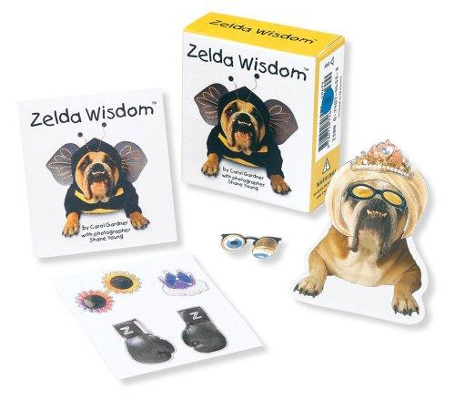9780740747526: Zelda in a Box (Boxed Kits)