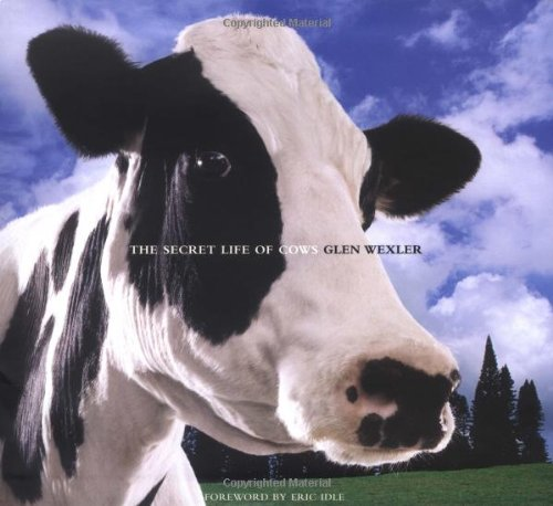 9780740763113: The Secret Life of Cows
