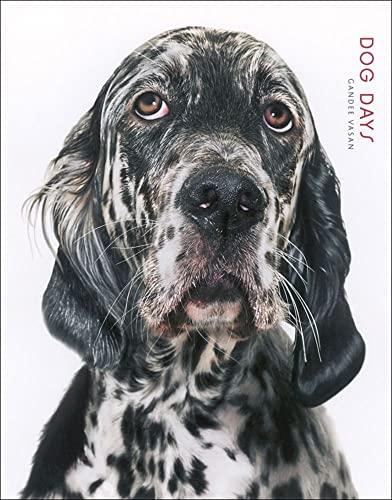 Dog Days: Vasan, Gandee