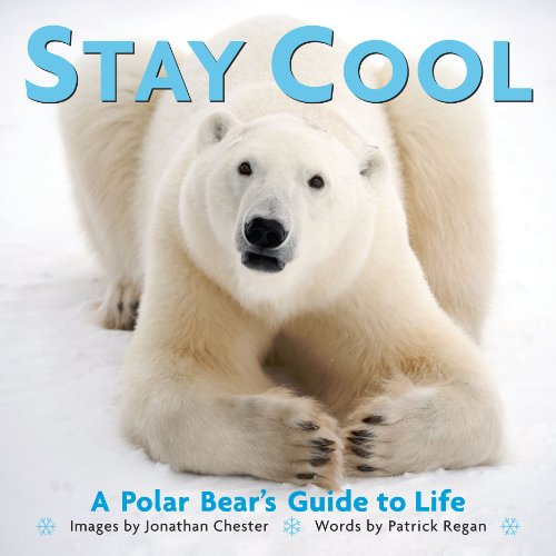 9780740791376: Stay Cool: A Polar Bear's Guide to Life (Extreme Images)
