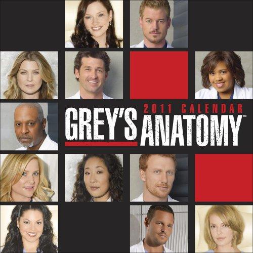 9780740796821: Grey's Anatomy 2011 Calendar