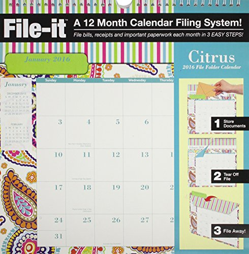 9780741250278: File-It Citrus File Folder 2016 Calendar