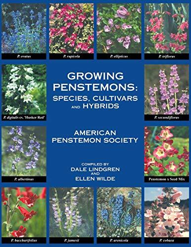 Growing Penstemons (Paperback or Softback): Lindgren, Dale T.
