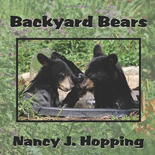 9780741465313: Backyard Bears
