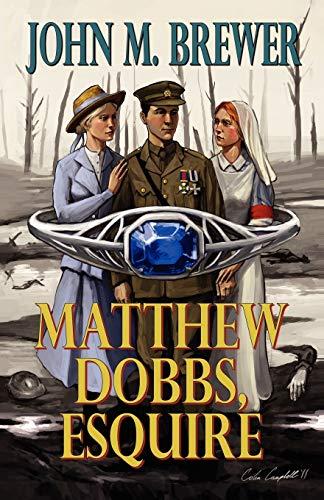 9780741465696: Matthew Dobbs Esquire