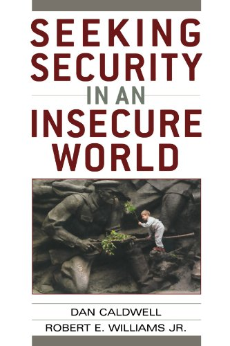 9780742538139: Seeking Security in an Insecure World