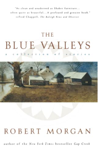 The Blue Valleys: A Collection Of Stories: Morgan, Robert