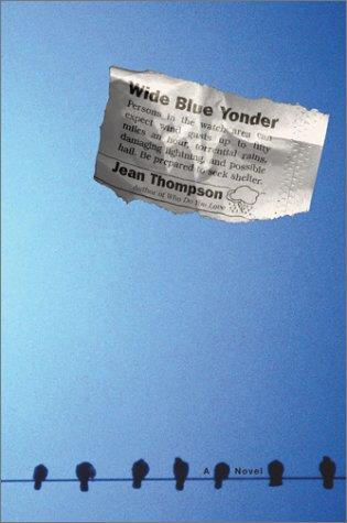 9780743205122: Wide Blue Yonder: A Novel
