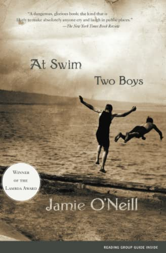 9780743222952: At Swim, Two Boys: A Novel