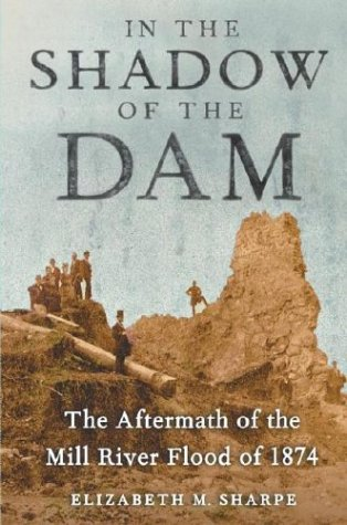9780743223577: In the Shadow of the Dam: The Aftermath of the Mill River Flood of 1874