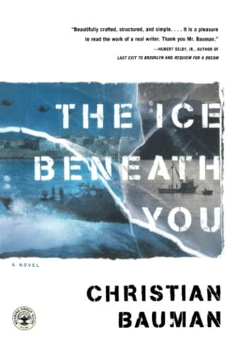 9780743227841: The Ice Beneath You: A Novel