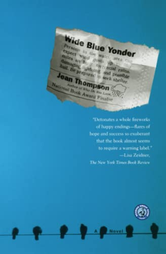9780743229586: Wide Blue Yonder: A Novel